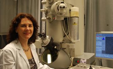 CCD - Montserrat Samso, Ph.D.