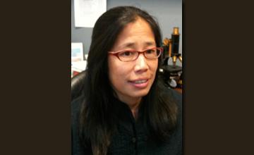 CMD - Liza Pon, Ph.D.